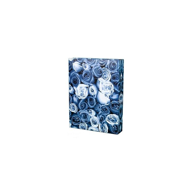 """Lot de 2 Albums photo à pochettes """"Roses"""" pour 200 photos 10x15  - Bleu et jaune"""