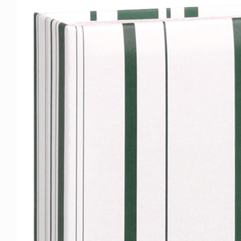 ALBUM-PHOTO-COLOR-STRIPES-VERT-200-POCHETTES-10X15-DETAIL