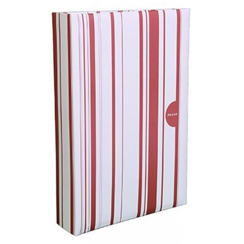 Album photo Color Stripes 402 pochettes 10x15 rouge