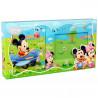 Coffret cadeau Mickey et son amie Minnie